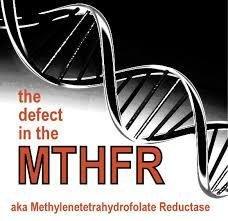 Methylation Protect