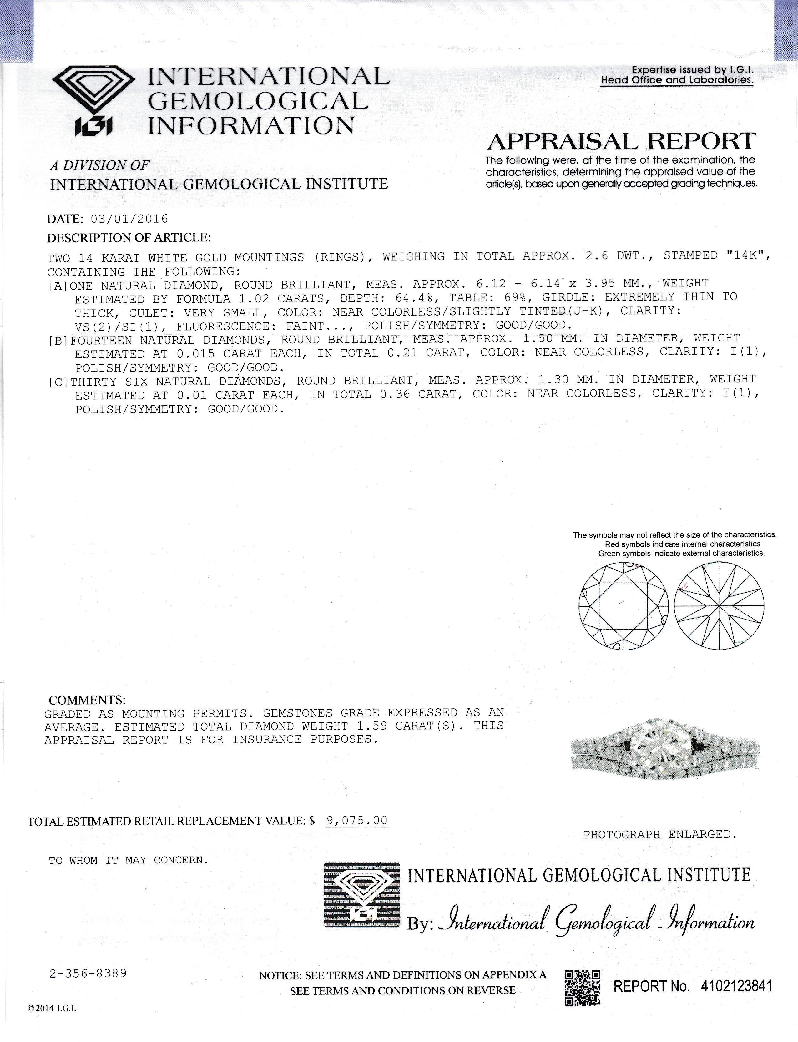 IGI report