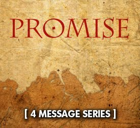 Promise (Series)