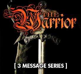 The Warrior (Series) 13600
