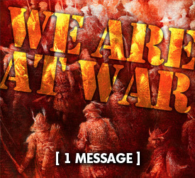 We Are at War 14500