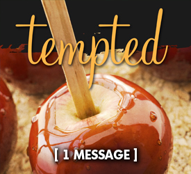 Tempted 16500