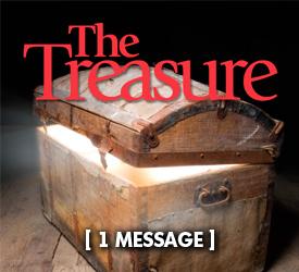 The Treasure 21300