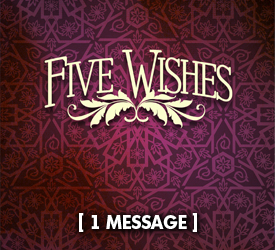 Five Wishes 22100