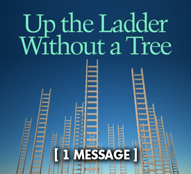 Up the Ladder Without a Tree 24400