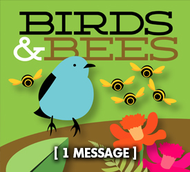 Birds and Bees 25200