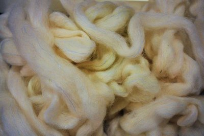 Breezy Hill Roving, bulk - Natural White