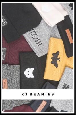 X3 Beanie Bundle Deal