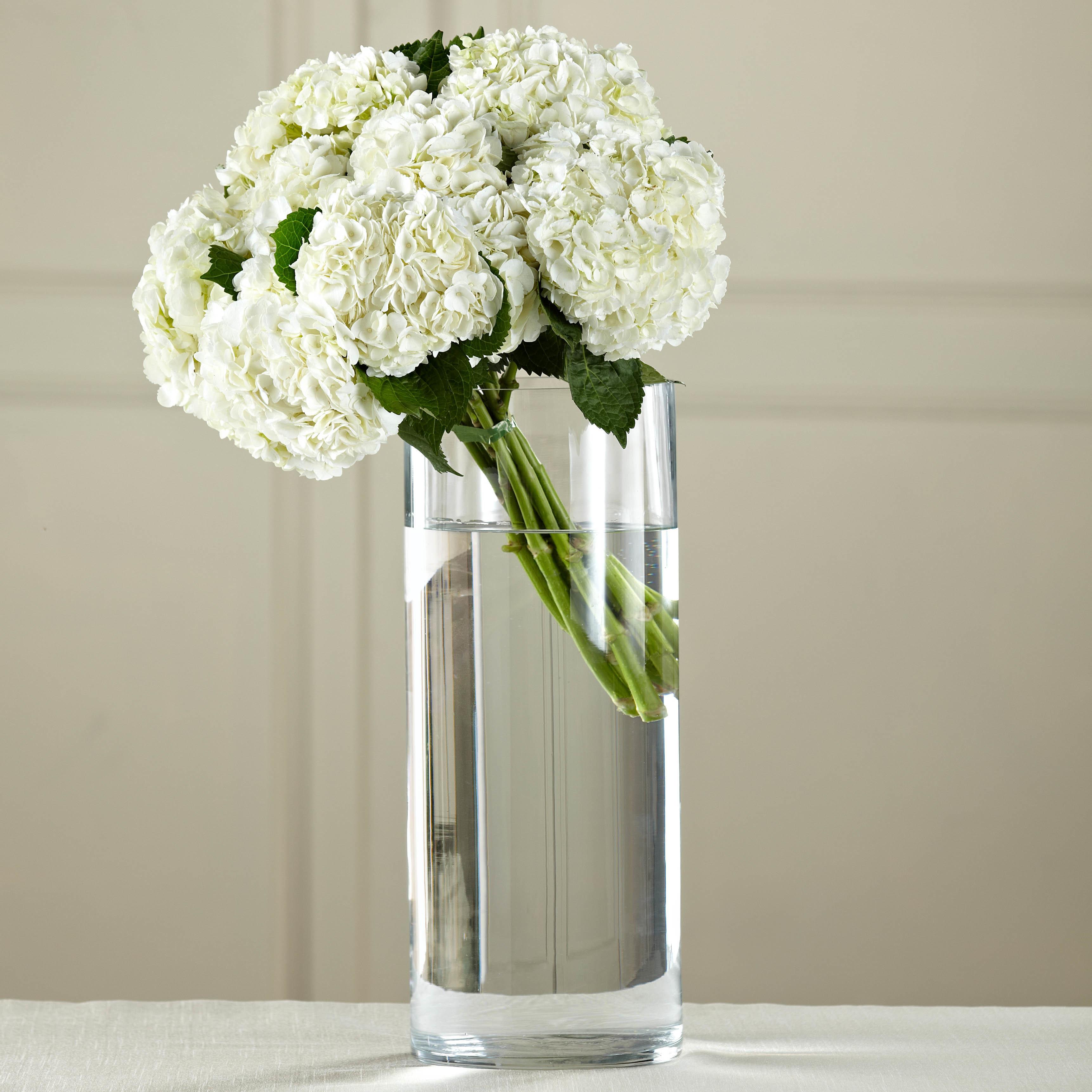 The Ftd White Hydrangea Hand Tied Bouquet By Tognoli Fresh
