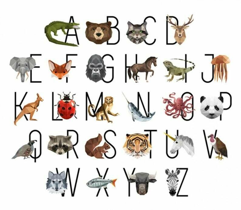 Animal Alphabet Panel - Hoffman Zookeeper