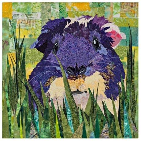 Animal Portrait Finishing 6490