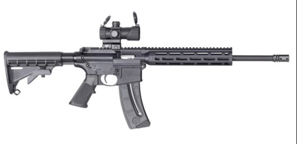 M&P15-22 SPORT W/ Red|Green Dot