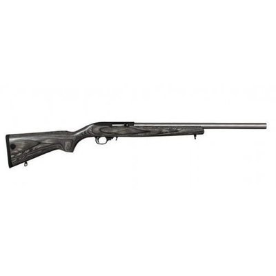 Ruger 10/22 Stainless Steel Target