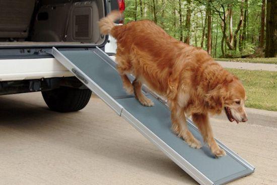 Petramp DeLuxe (luxe hondenloopplank) AFPetRamLux