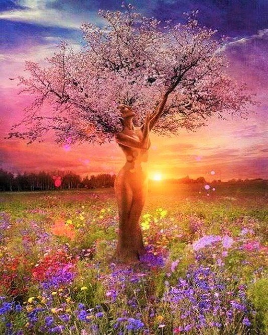 Gaia's Sacred Soothing Salve, 4oz