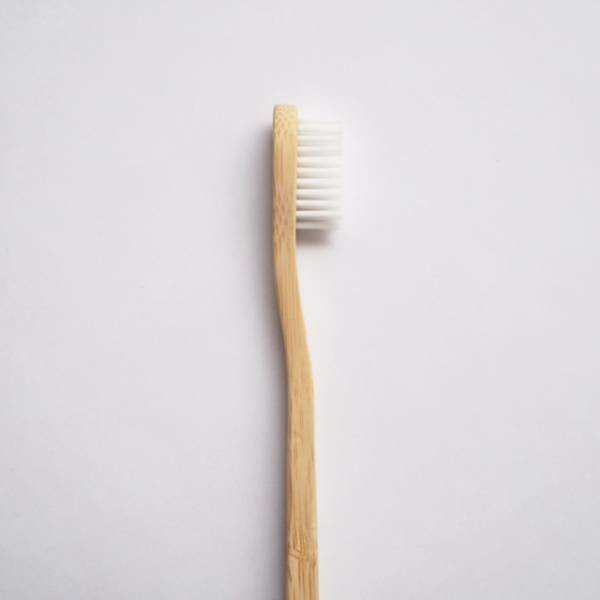 Simply Good™ Bamboo Toothbrush Earth