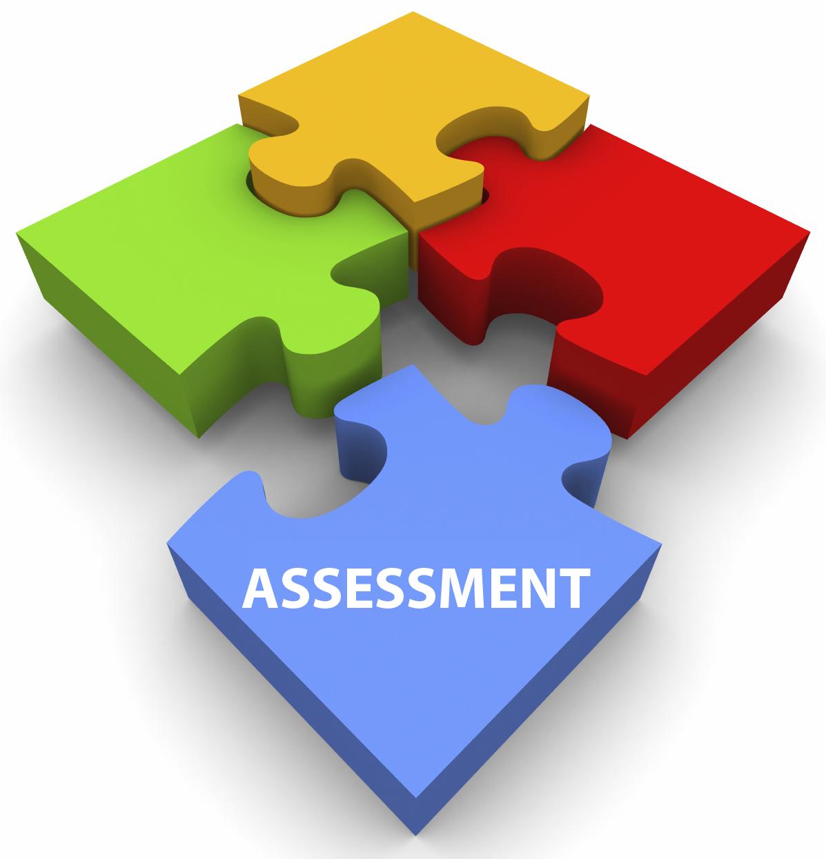 Assessment 00006