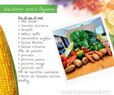 Panier Extra Légumes