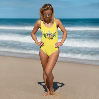 VI Swimsuit One-Piece Swimsuit