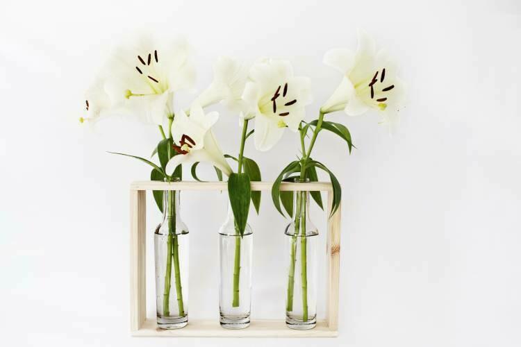 Bottle Vases With Wood Holder