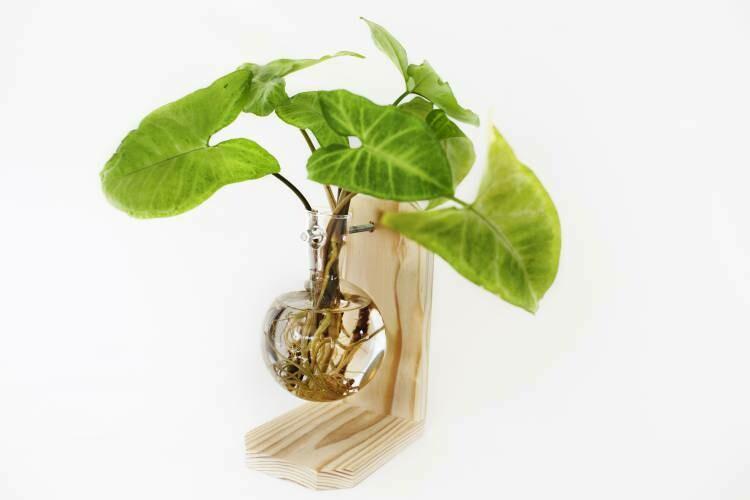 Floating Globe Vase