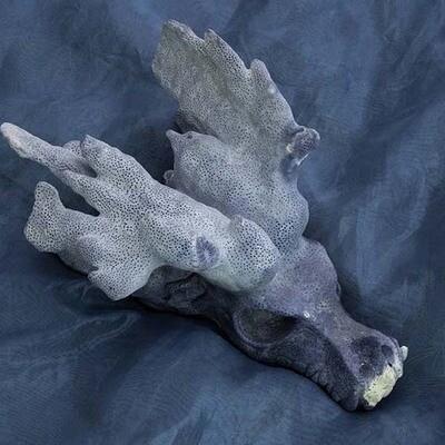 Lemurian Dragons Workshop