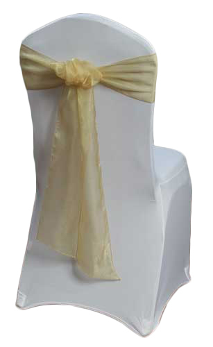 Gold Organza Sheer Sash Rental Gold Organza Sheer Sash Rental