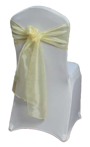Yellow Mirror Sash Rental