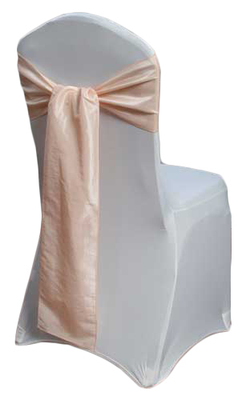 Blush Taffeta Sash Rental