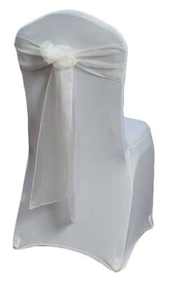 Ivory Organza Sheer Chair Sashes
