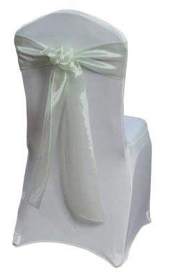 Celery Mirror Chair Sashes