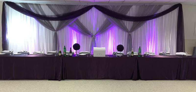 Silver & Eggplant Sheer Backdrop Silver & Eggplant Sheer Backdrop
