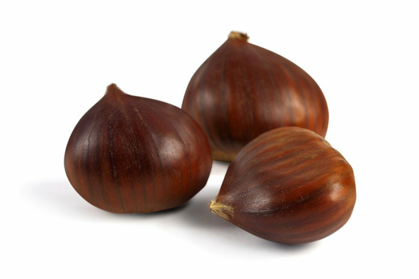 Chestnuts / Castanhas (from Portugal)         (16 Ounces)
