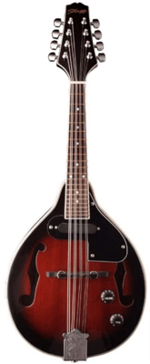 Stagg Mandolin M50 E