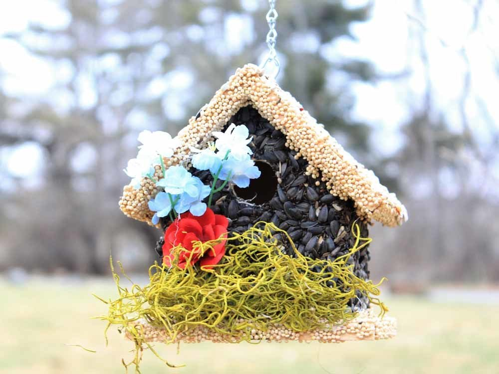 Edible Bird Feeder - Light Roof Short Birdhouse 096121810017
