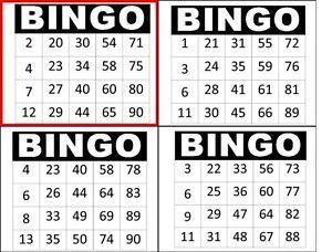 Bingo Social Ticket