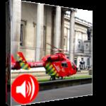 Le Référé : Pour l'urgence et l'évidence (audio)