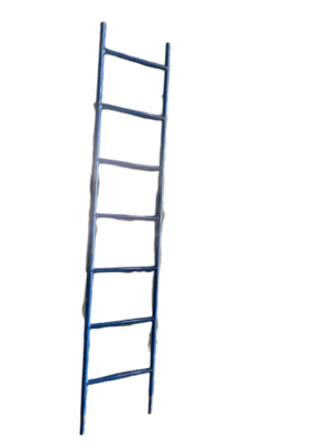ACCESS LADDER 6'5'H X 15'H
