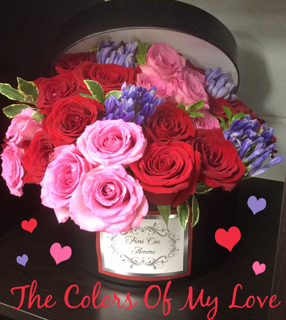 The Colors of My Love - For all the reasons you love her! V40023