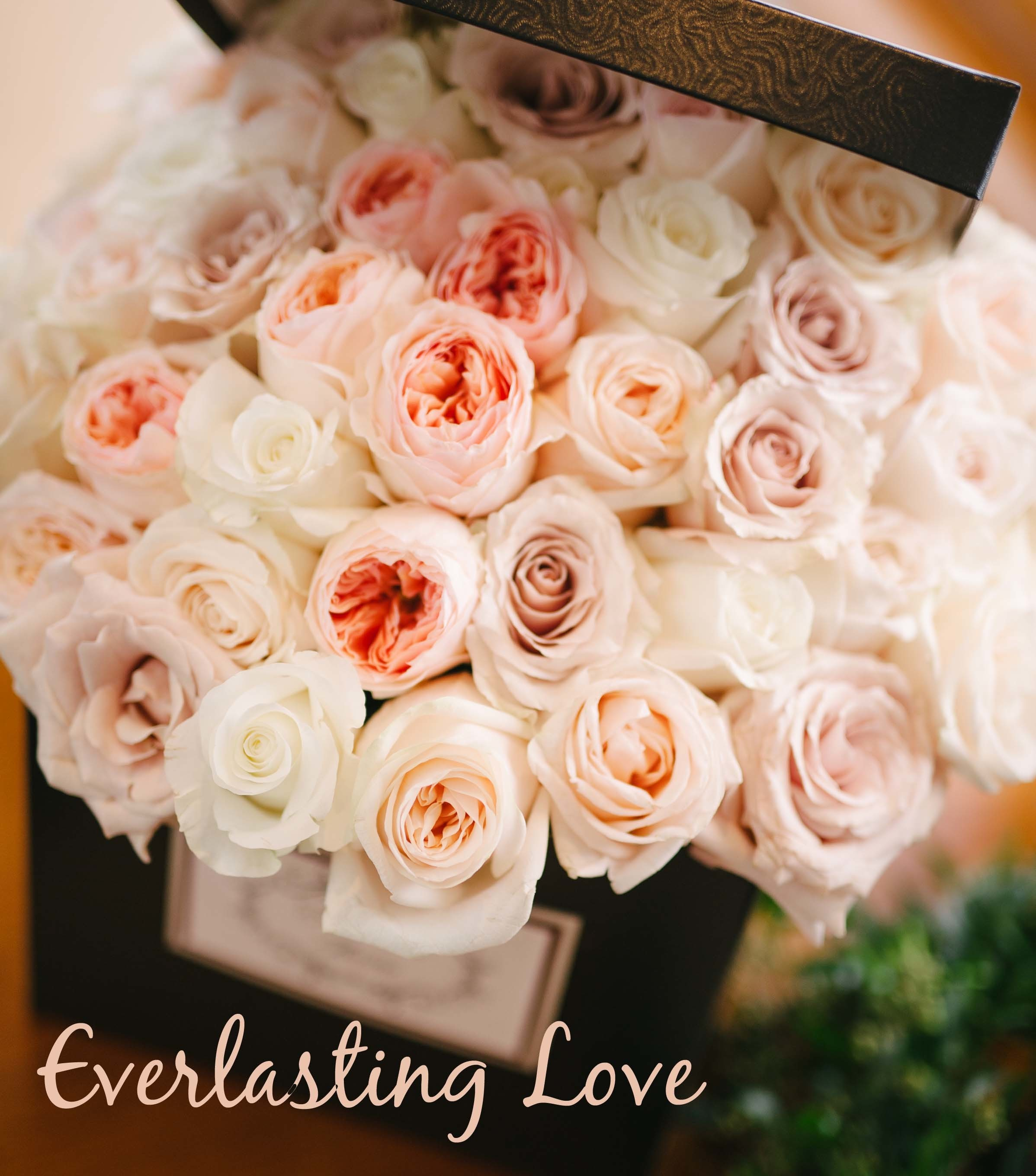 Everlasting Love - When she is your forever love! V40026