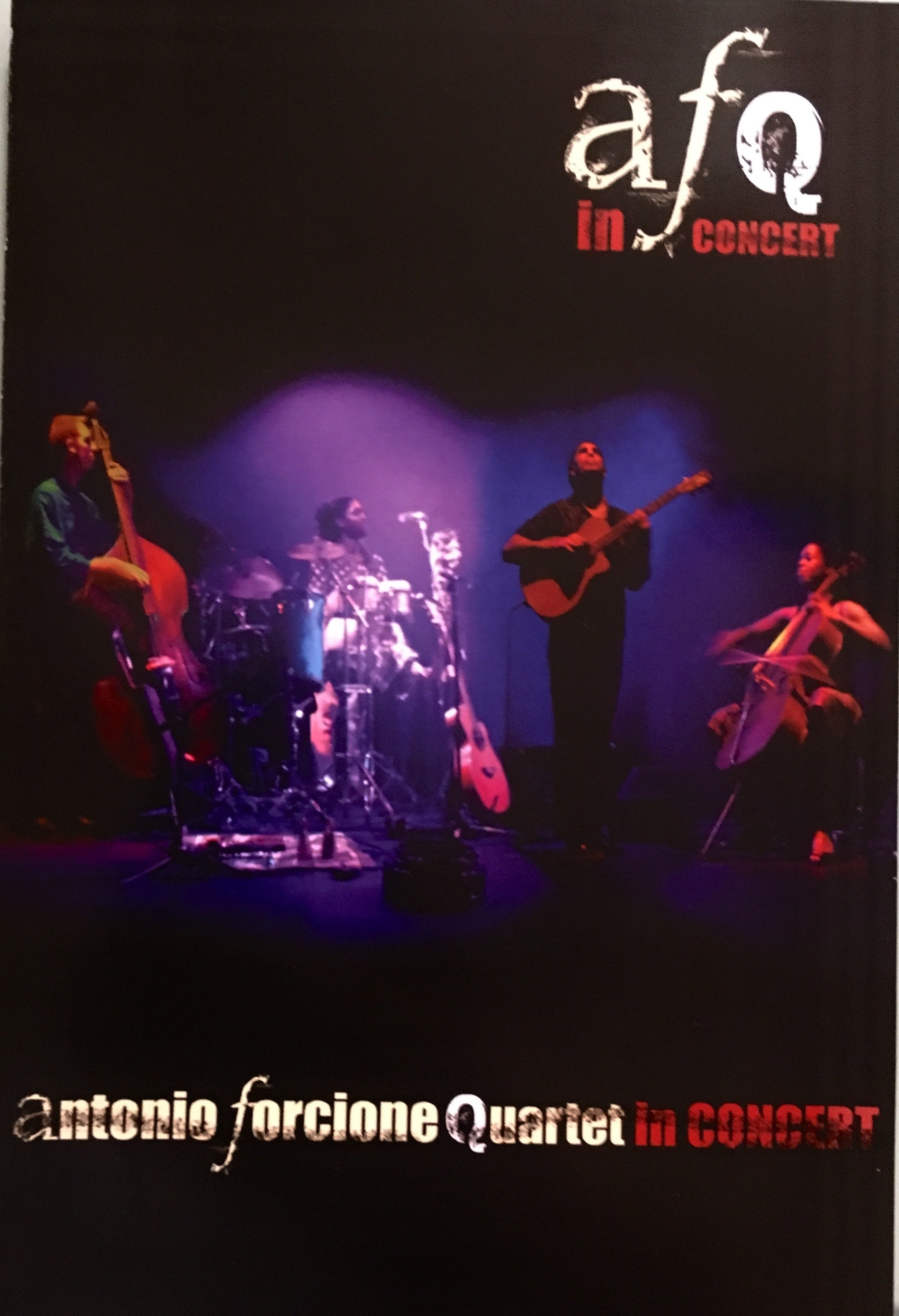 Antonio Forcione. Quartet in Concert DVD NAIMDVD100