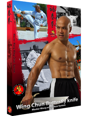 Wing Chun Butterfly knives