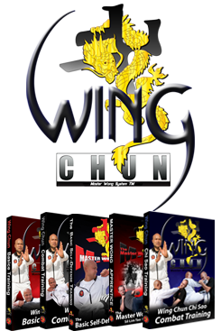 Martial Art Training Bundle (for wing chun beginners)