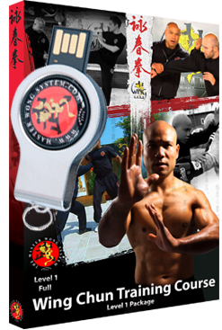 Wing Chun Course Level 1 Package No Support on USB