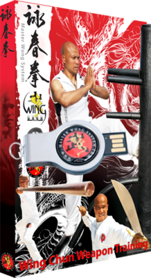 Wing Chun Course Level 4 Package No Support on USB