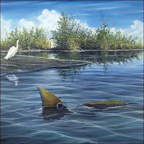 Steve Whitlock 'Tailing Redfish'