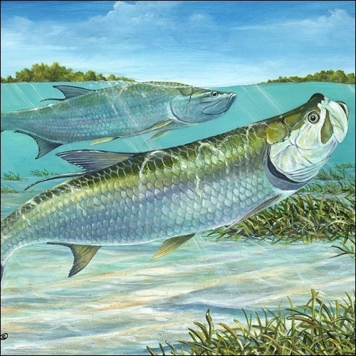Steve Whitlock 'Silver Kings' - Tarpon