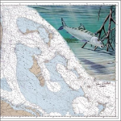 Steve Whitlock 'Bahamas Bonefish Chart'