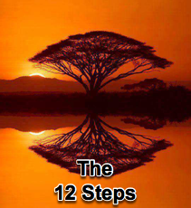 The 12 Steps - 12/19/12
