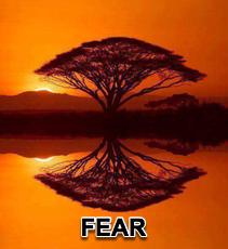 FEAR - 10/17/12